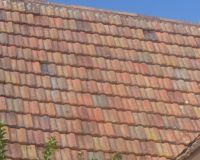 Roof tiles.jpg