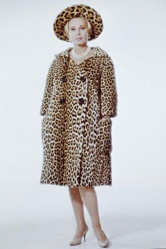 hbz-leopard-gettyimages-88803788.jpg