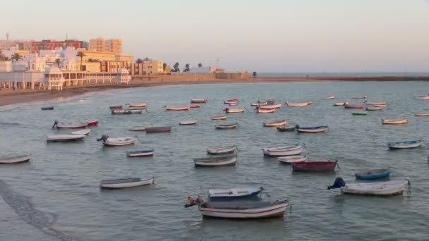 small-boat-harbor-plenty-boats.thumb.jpg.552a35cb293863bd851b4cb8b95847de.jpg