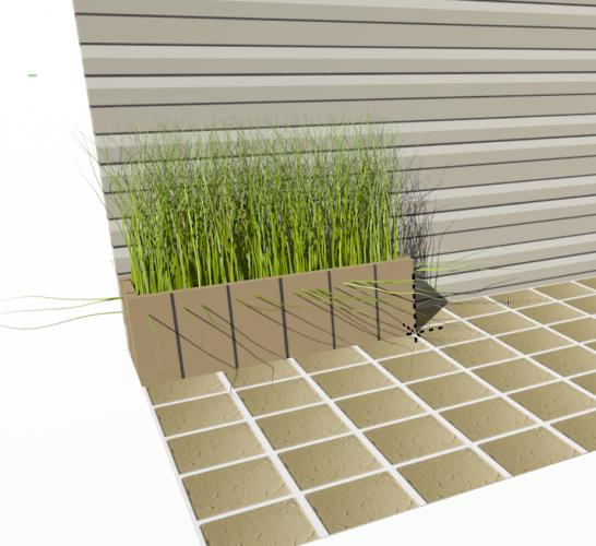 Long Grass 1.png