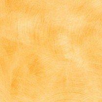 4745_10 Maroochy Brush.jpg